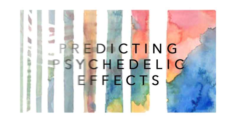 Predicting who may do best with psychedelic-assisted therapy