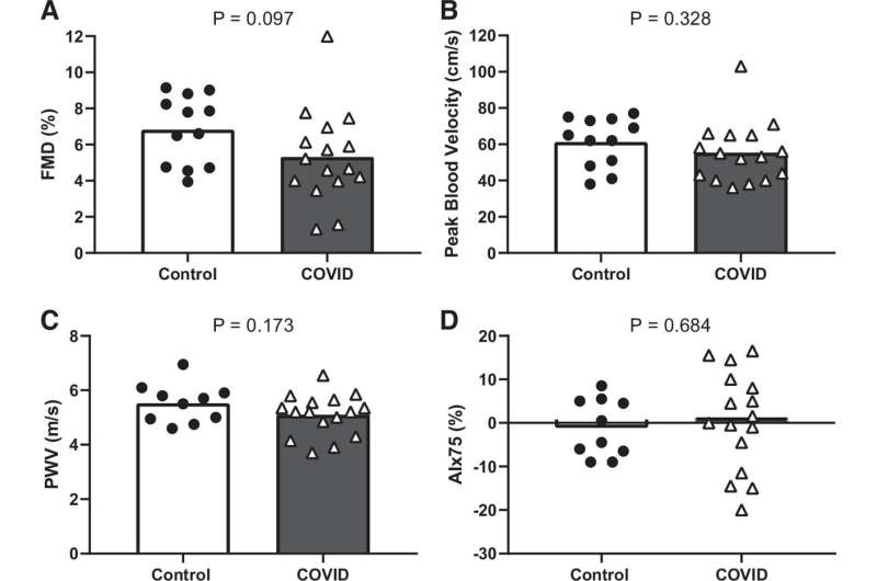 Previously healthy young adults with long COVID show vascular dysfunction in limbs, but not brain