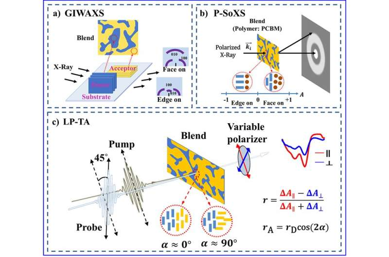 Probing molecular orientation by polarization-selective transient absorption spectroscopy