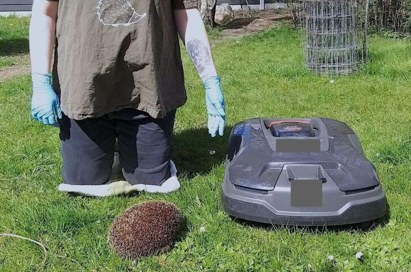 Product features of robotic lawn mowers determine danger to hedgehogs