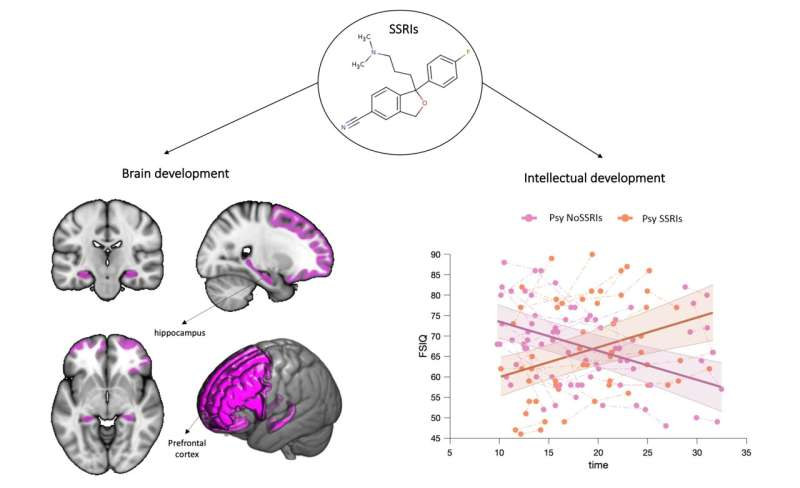 Protecting the IQ of people at risk for psychosis