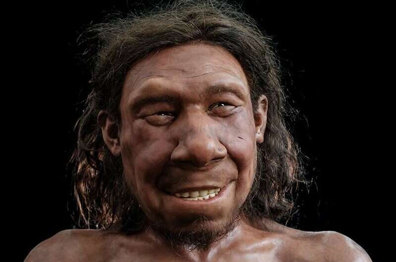 Putting a face to Krijn, the Netherland's oldest Neanderthal man