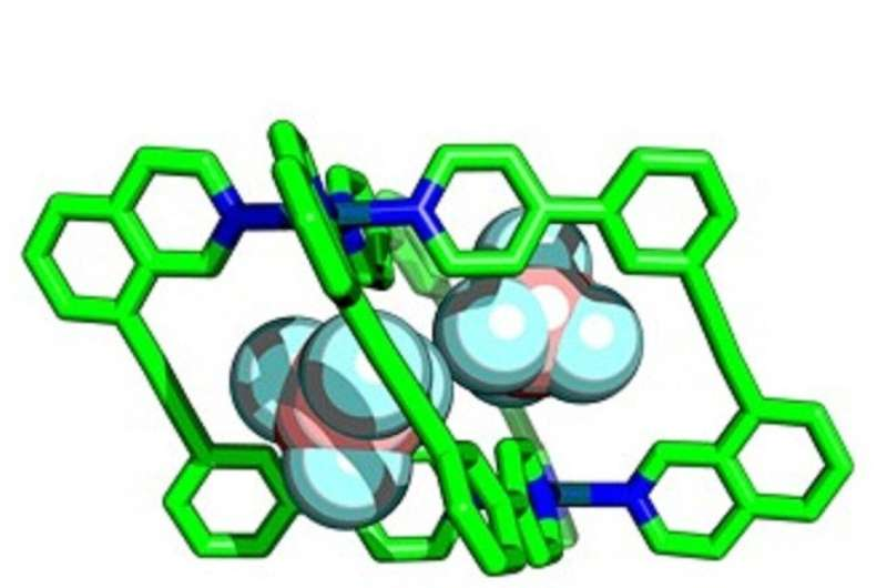 Quick way to create molecular cages could revamp search for new materials