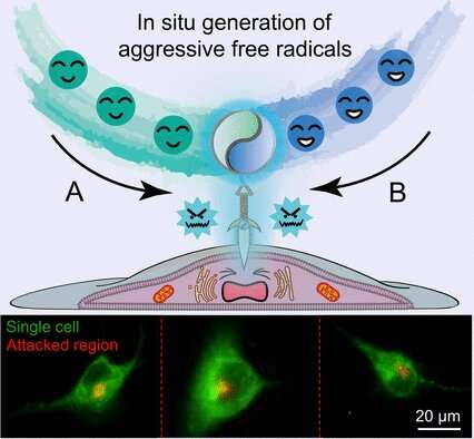 Radical attack on live cells