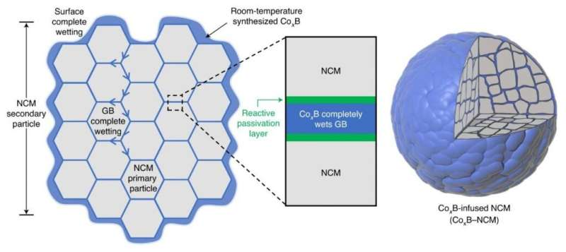 Reactive boride infusion stabilizes ni-rich cathodes for lithium-ion batteries