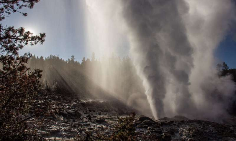 Reawakened geyser does not foretell Yellowstone volcanic eruptions, study shows