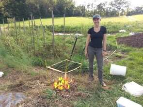 Rebuilding soil microbiomes in high-tunnel agricultural systems focus of study