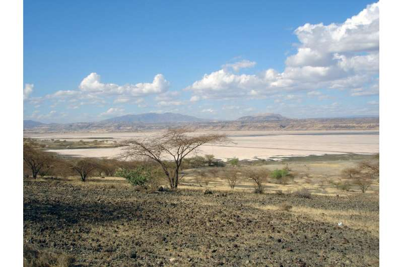 Records from Lake Magadi, Kenya, suggest environmental variability driven by changes in Earth's orbit