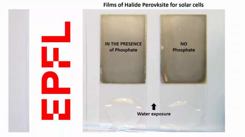 Removing the lead hazard from perovskite solar cells