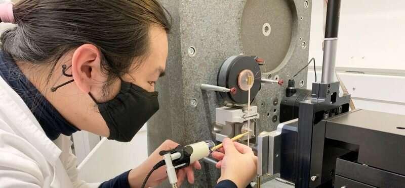 Researcher cracks the hidden strengthening mechanism in biological ceramics