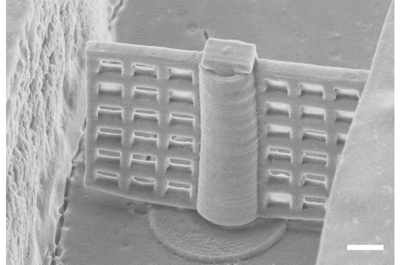 Researchers 3D print rotating microfilter for lab-on-a-chip applications