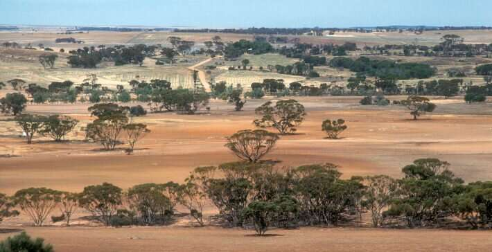 Researchers calculate the cost of restoring Australia's degraded ecosystems