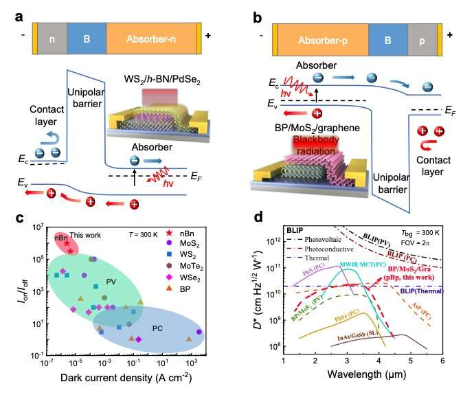 Researchers create unipolar barrier photodetectors based on 2D layered materials