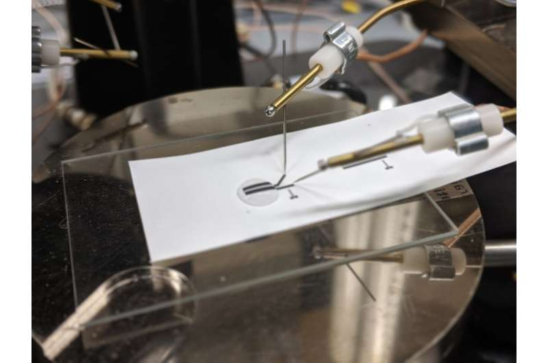 Исследователи демонстрируют полностью перерабатываемую печатную электронику