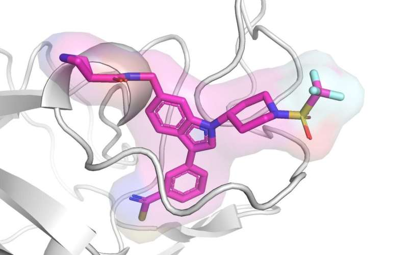 Researchers develop first-in-class inhibitors against key leukemia protein