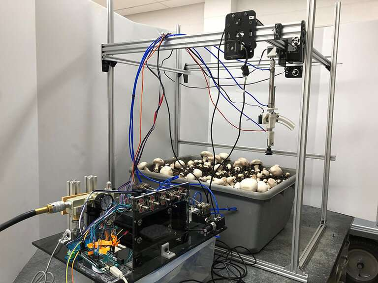 Researchers develop prototype of robotic device to pick, trim button mushrooms