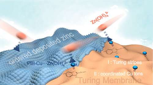 Researchers develop Turing membrane to improve performance of zinc-based batteries