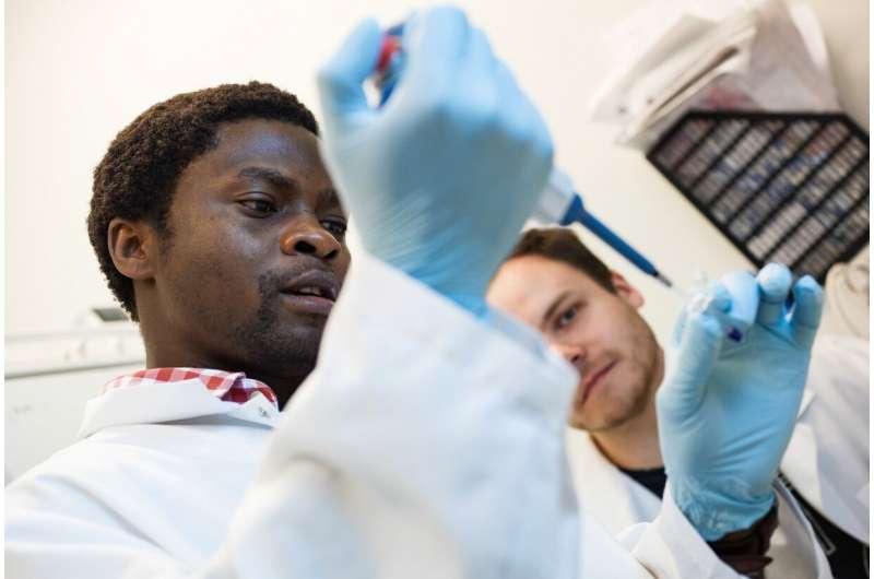 Researchers discover novel non-coding RNAs regulating blood vessel formation