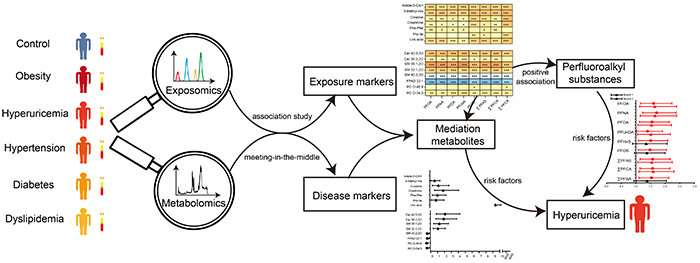 Researchers discover risk of chronic diseases caused by exogenous chemical residues