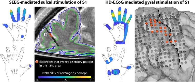 Researchers evoke sense of touch through brain implant electrodes