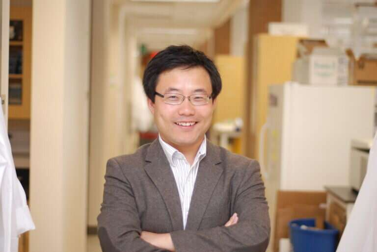 Researchers identify a new mechanism by which transplanted stem cells treat disease