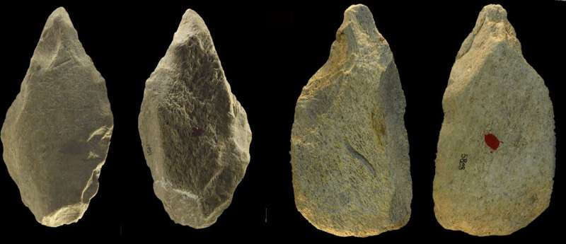 Researchers identify record number of ancient elephant bone tools