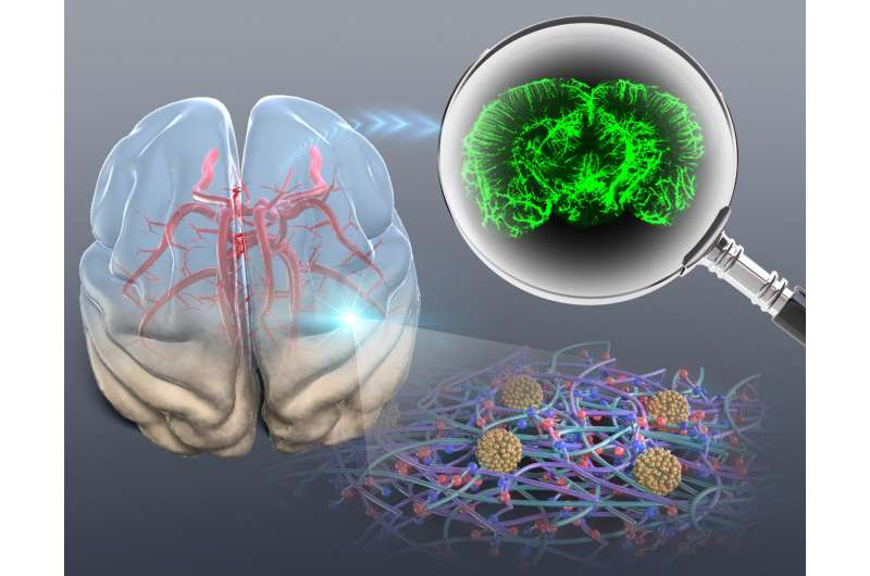Researchers improve optical tissue clearing method to diagnose cancer