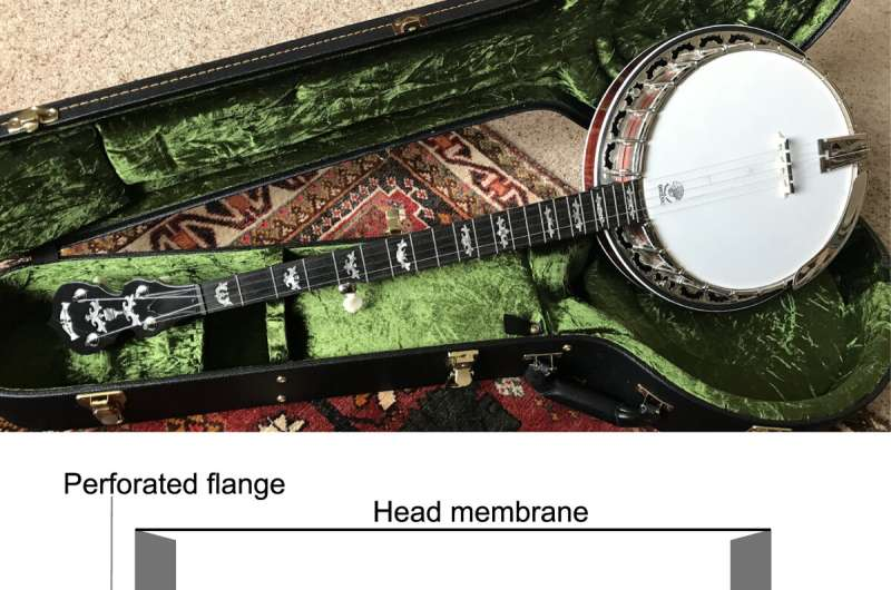 Researchers measure and synthesize the musical acoustics of a 5-string banjo