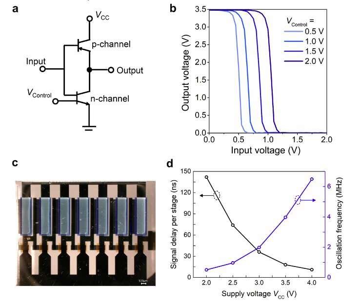 Des chercheurs réalisent des transistors à double base perméables organiques verticaux pour circuits logiques