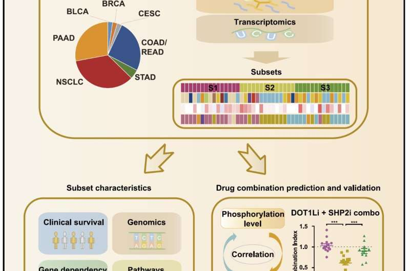 Researchers reveal molecular subtypes and new precise therapy for KRAS mutant cancers