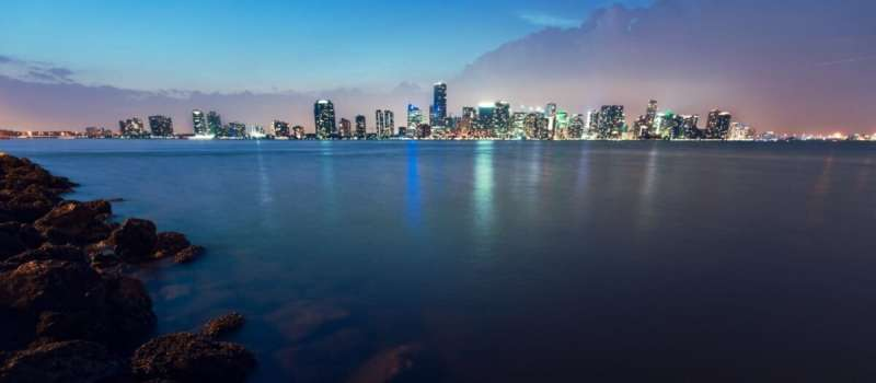 Researchers work to bring Biscayne Bay back from the brink