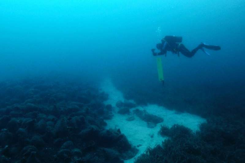 Resting around 30 metres for almost 2,500 years, the Peristera shipwreck opened to recreational scuba divers during the summer o
