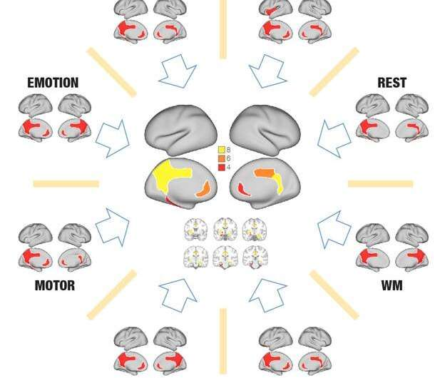 Revisiting the Global Workspace orchestrating the hierarchical organisation of the human brain