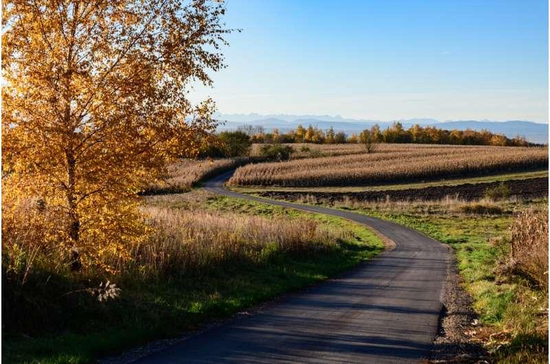 Roadside ditches