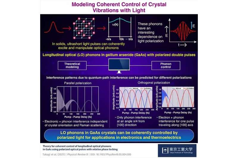 Ruling electrons and vibrations in a crystal with polarized light