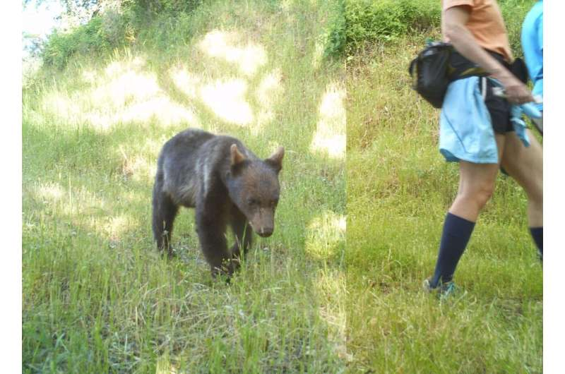 Safe distance: How to make sure our outdoor activities don't harm wildlife