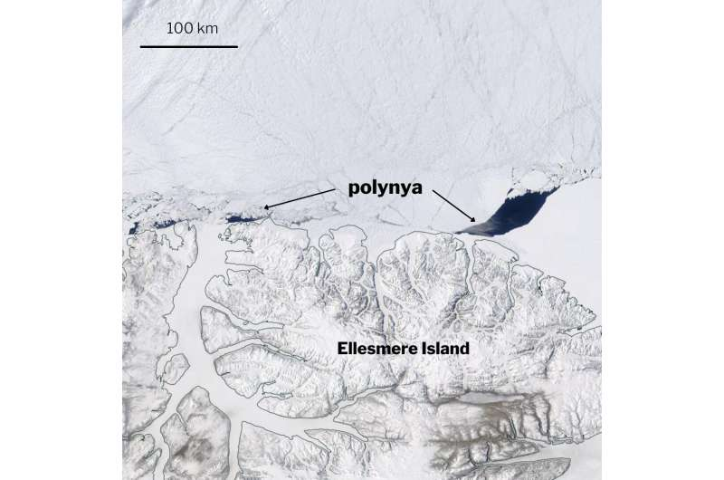 Scientists discover large rift in the Arctic's last bastion of thick sea ice