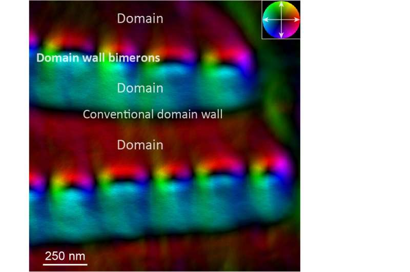 Scientists observe a new type of topological defect in chiral magnets for the first time