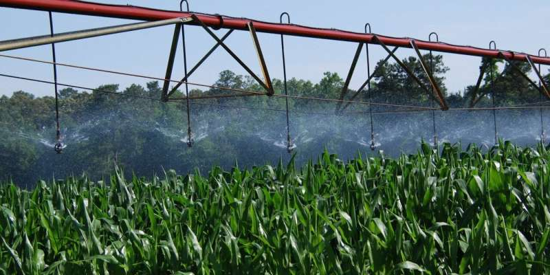 Scientists propose improvements to precision crop irrigation