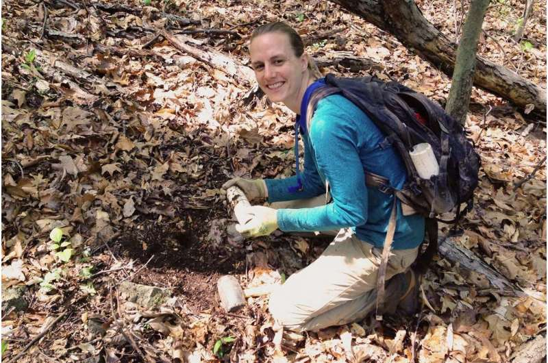 Scientists look to soils to learn how forests affect air quality, climate change
