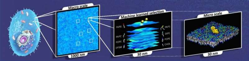 Scientists tap the power of high-performance computing in a bet to understand cancer growth