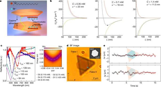 Self-assembled optical cavities can reach a strong-coupling state that supports polariton formation