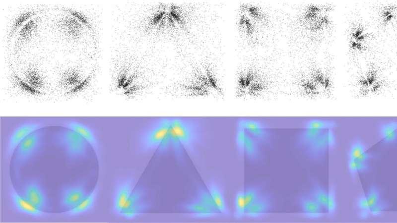 Shared expectations help shape visual memory