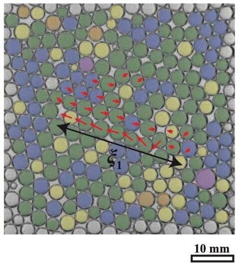 Shuffling bubbles reveal how liquid foams evolve
