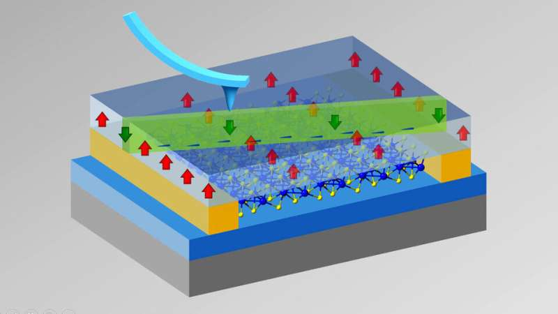 Signature approach reveals prized property in nanoscopic material