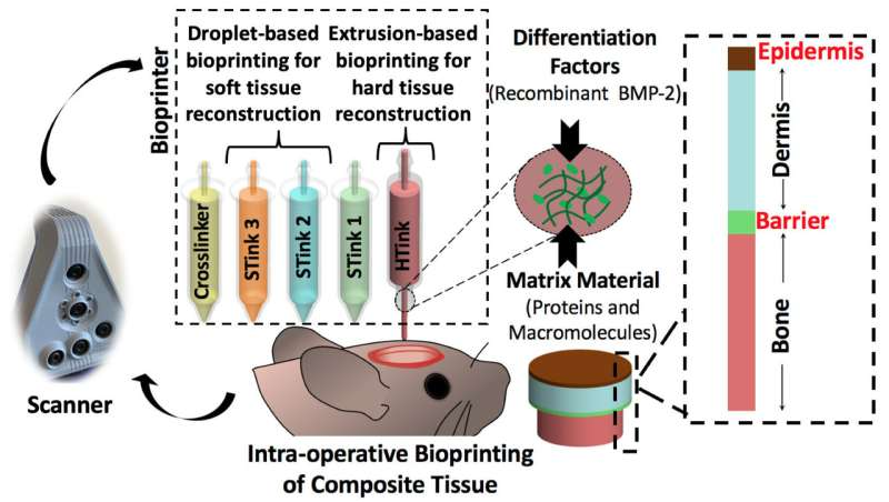 Skin and bones repaired by bioprinting during surgery