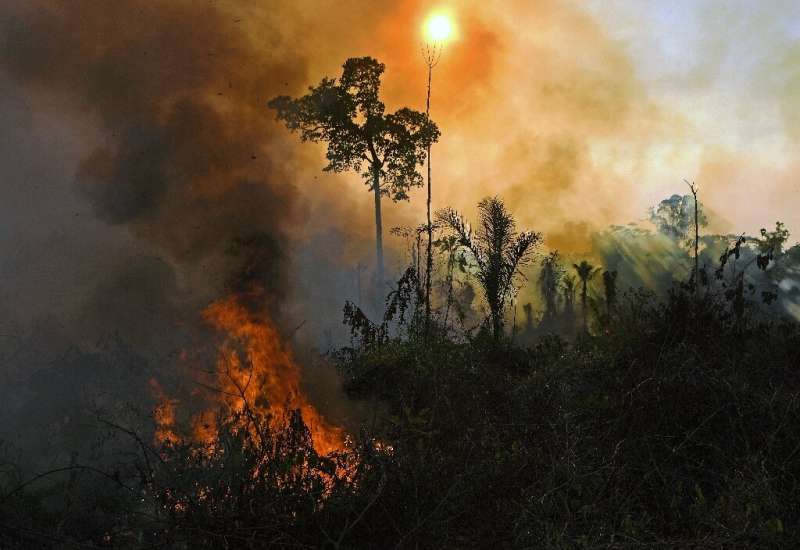 Smoke and flames rise from a fire in the Amazon rainforest in August 2020