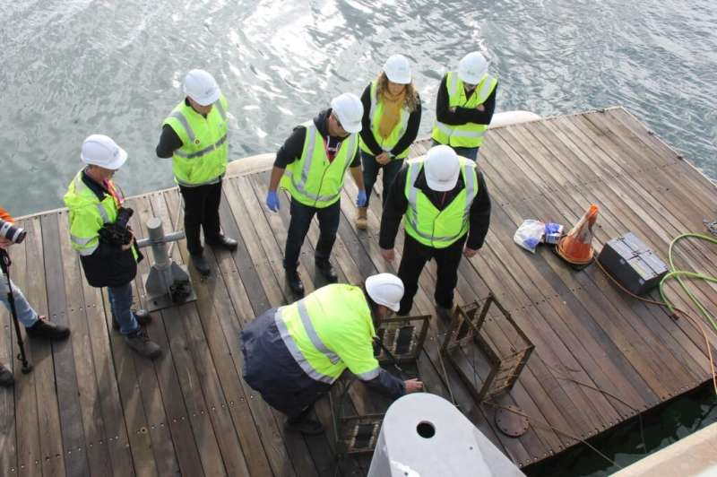 Smooth sailing for bio-fouling research