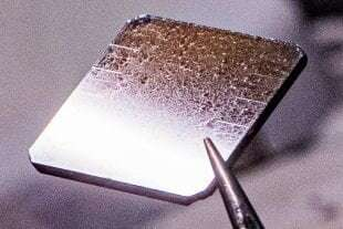 Solar energy collectors grown from seeds
