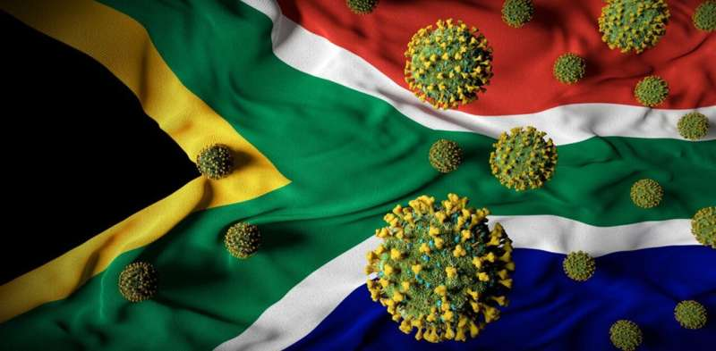 South African health experts have identified a new lineage of SARS-CoV-2: what's known so far